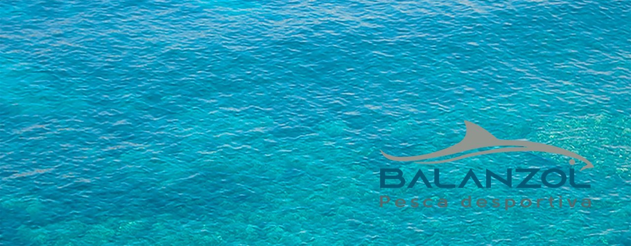 BAIT CASTING